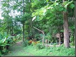 บ้านเล็กในป่าใหญ่ พักกันที่นี่ครับ